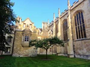 ニュートンのリンゴの木(Trinity college)